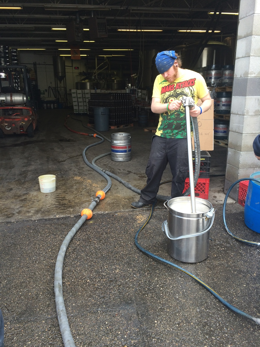 CBC dishing out free pale ale wort for Big Brew Day