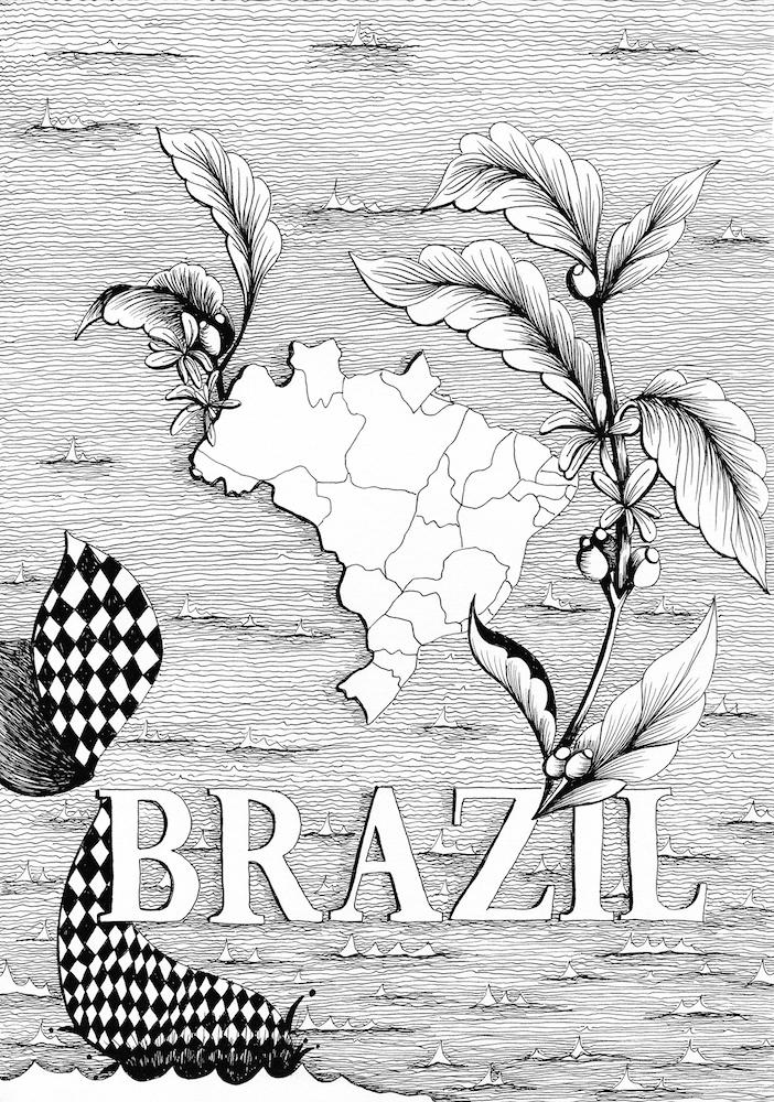 Coffeeproduction_brazil_GabrielaSanchezySanchezdelaBarquera