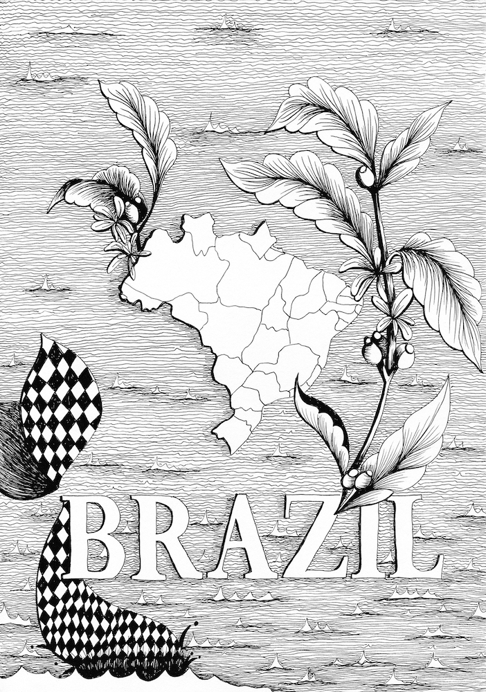 coffee_brazil_GSYSB.jpg