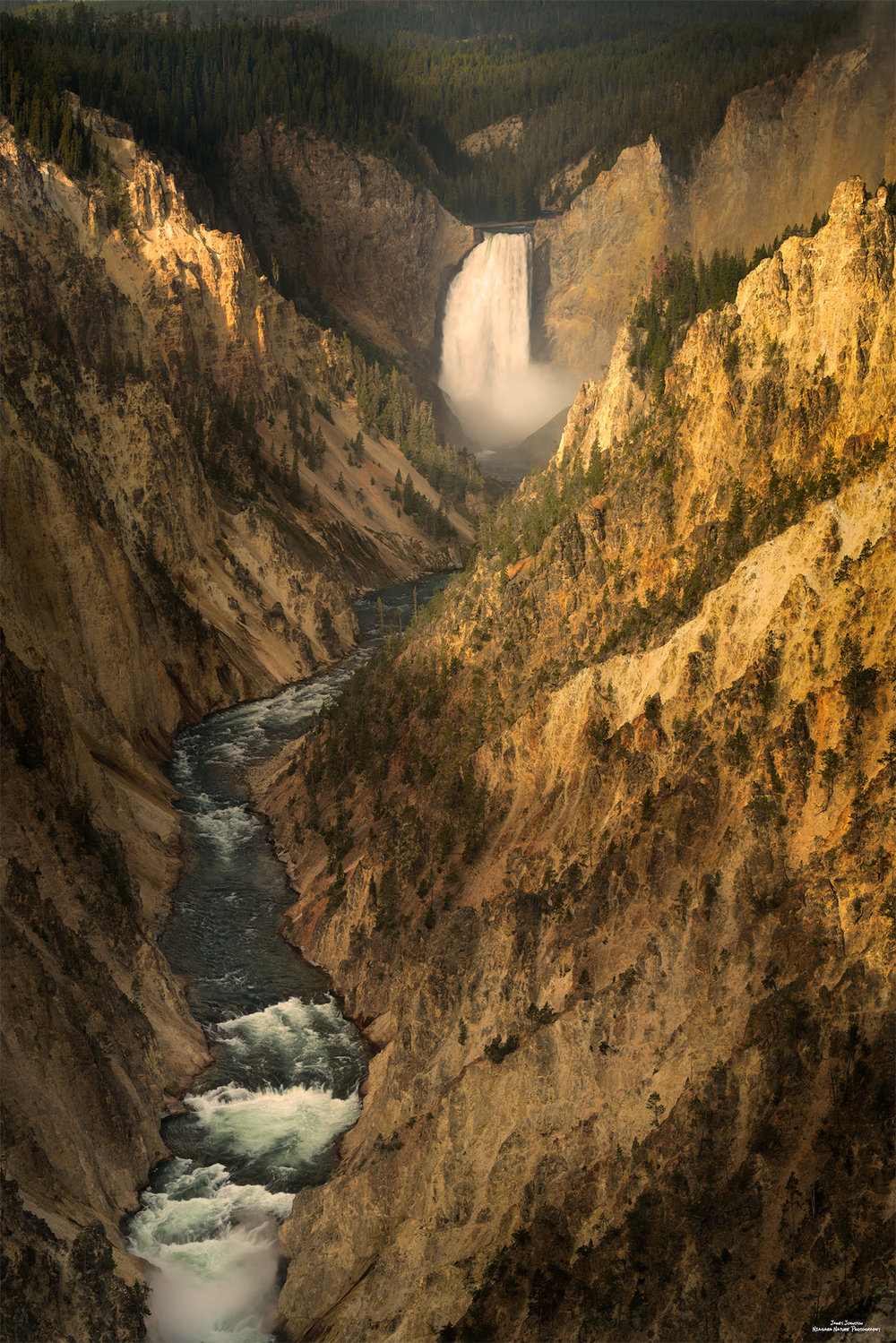 Yellowstone Majesty