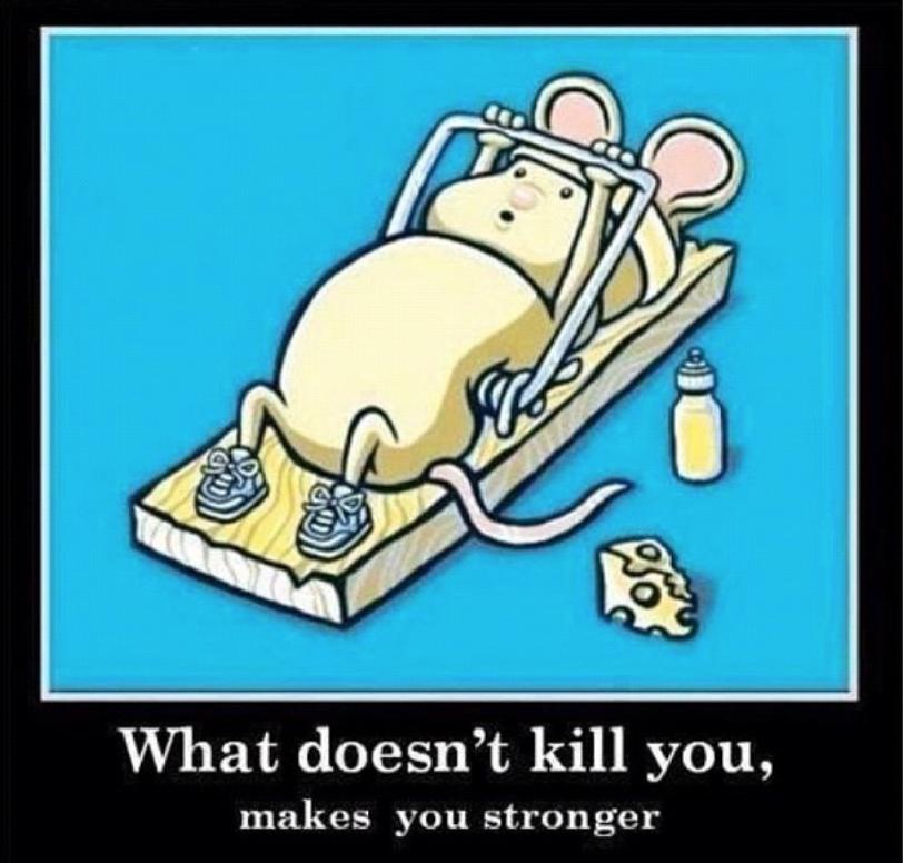 Mousefit.png