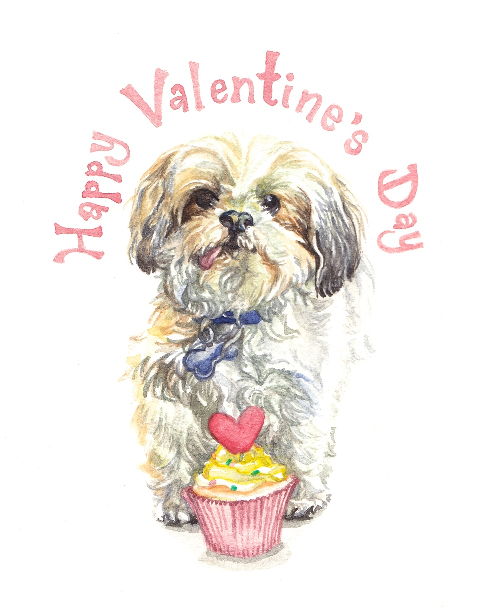 Happy Valentine's Day from Bam Bam, a sweet Shih Tzu from Lucky Dog Animal Rescue.