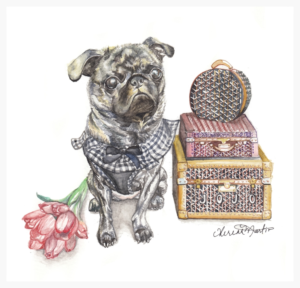 Jetsetter Jojo the Brindle Pug