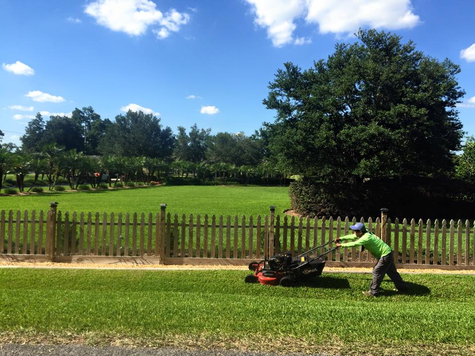Eric's Land Management | 813-477-5552 | Residential Lawn Service