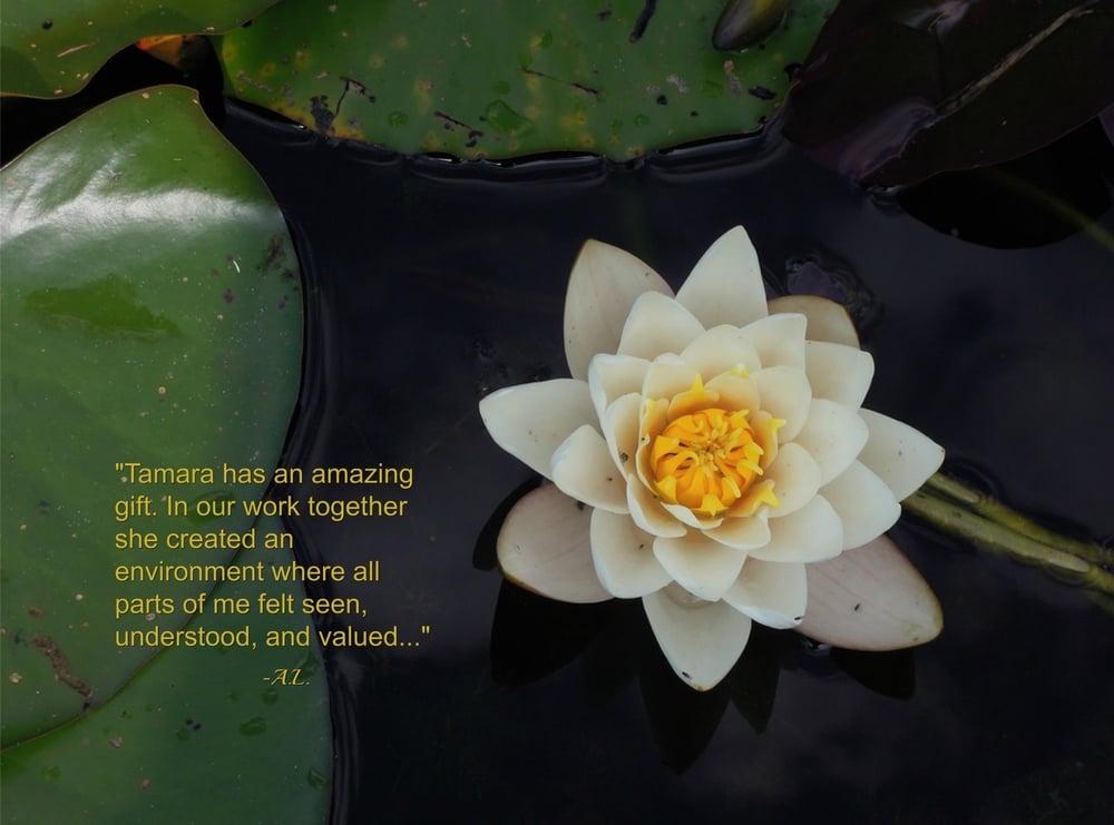 lotus text yellow.jpg