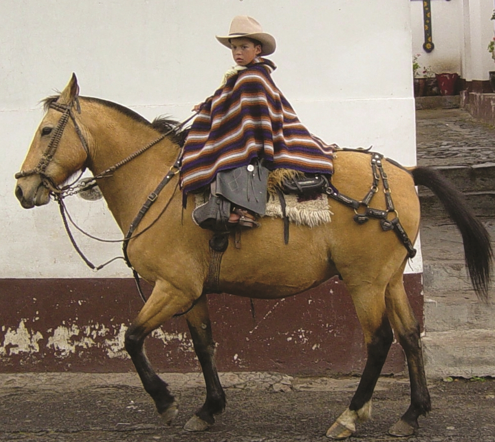 Ride Andes Horse Riding Treks Ecuador
