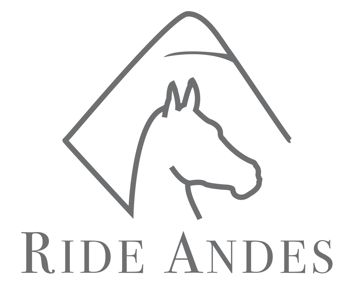 Ride Andes