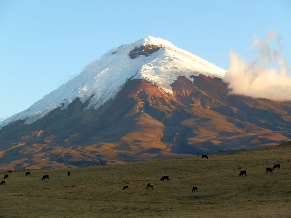 COTOPAXI SHORT TOUR 3 DAYS