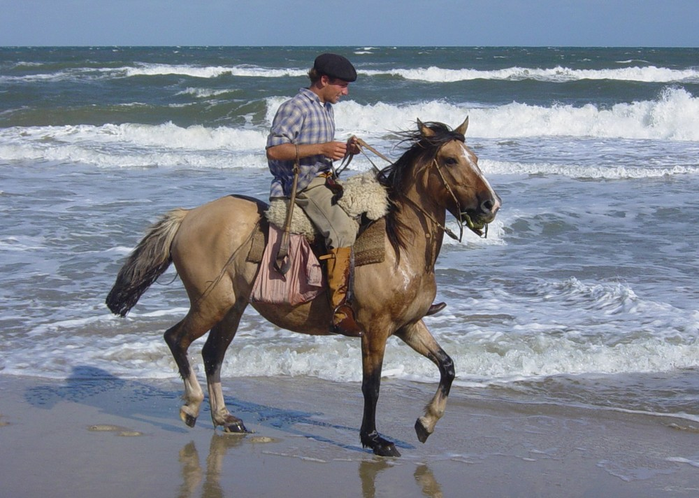 Copy of Uruguay , gaucho & waves.jpg