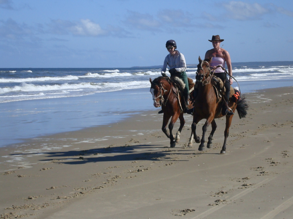 ride andes uruguay horse tours beach riding