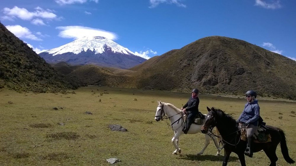 Ride Andes Pedregal ecuador cotopaxi horse trek new york times places to go 2017