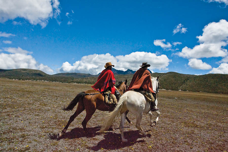 ride andes horse trek ecuador galloping