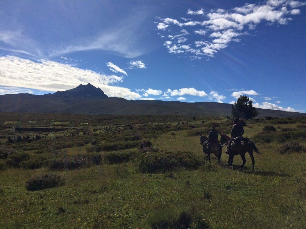 ride andes horse trek ecuador volcanoes vistas riding