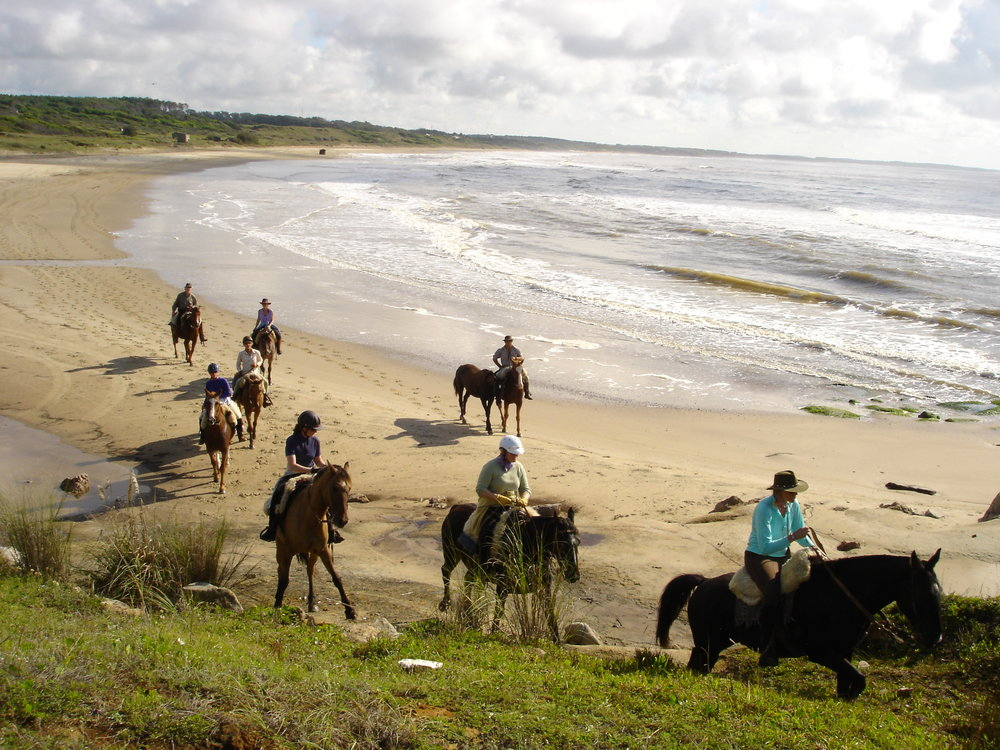 Uruguay dolphin bay, horse riding holiday.jpg