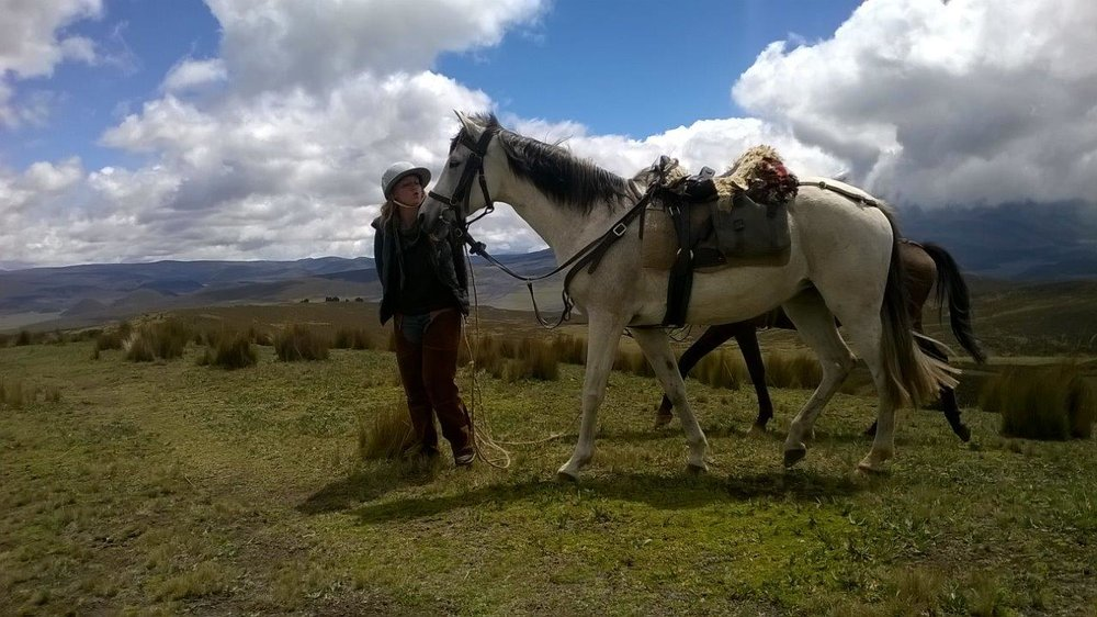 ride andes horse trek andean adventure ecuador
