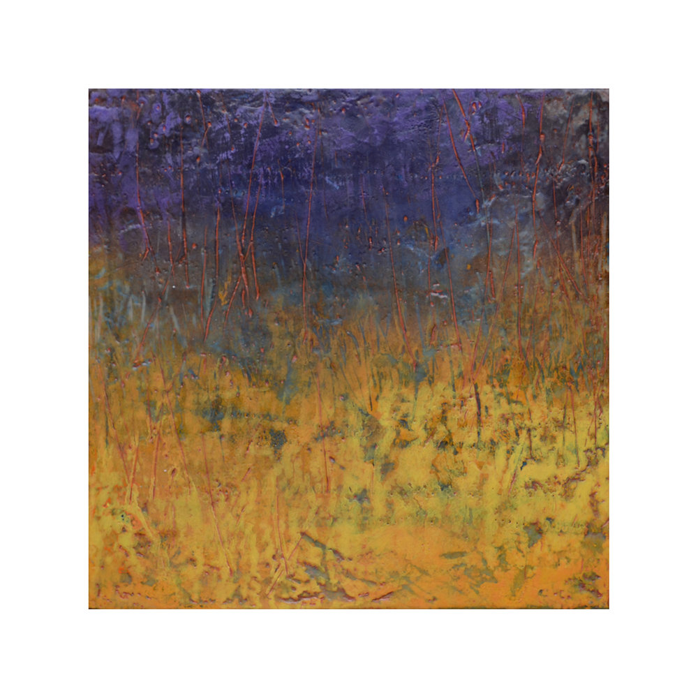 Field and Thicket   12 x 12  Encaustic on Panel