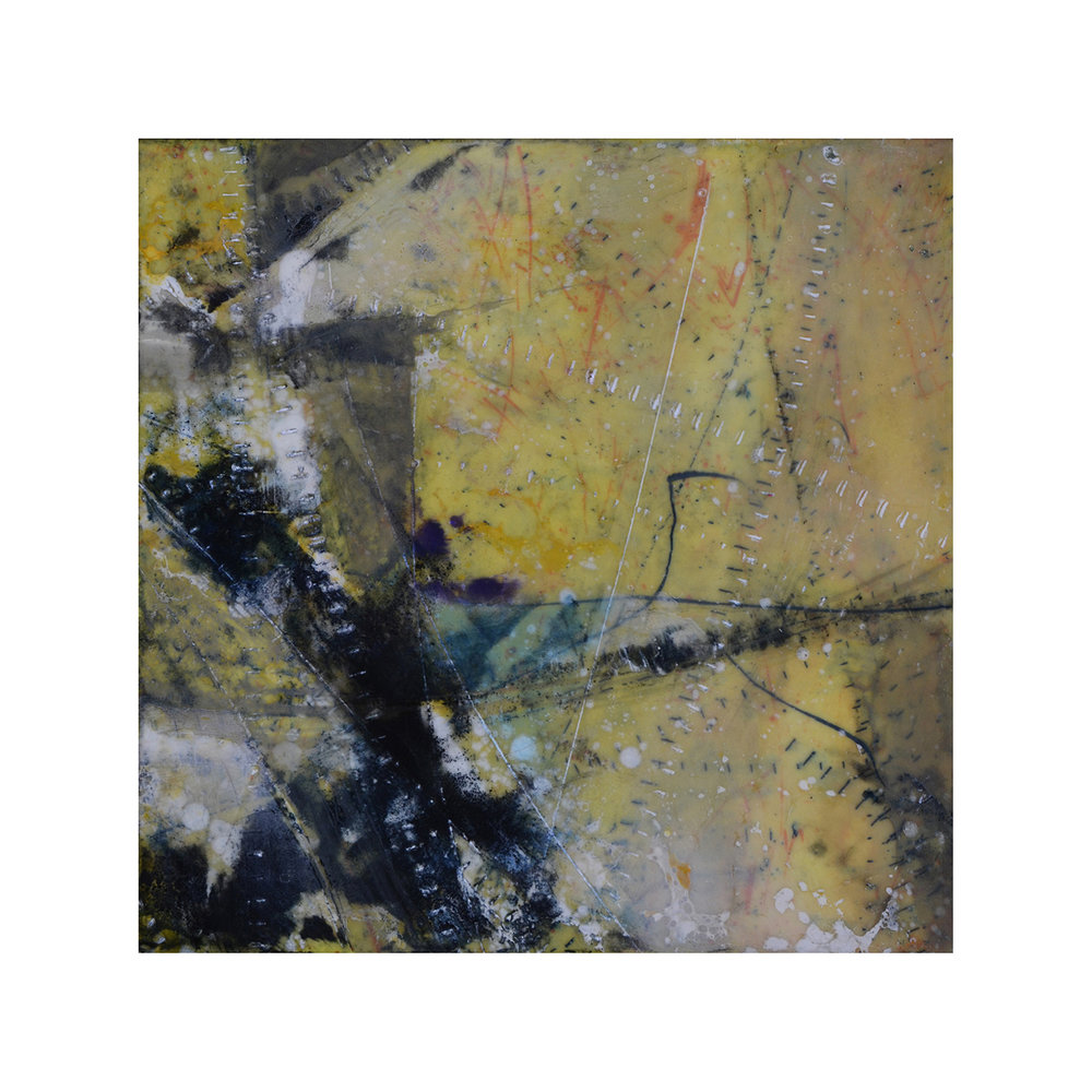 Forces of Nature 2   12 x 12  Encaustic on Panel  $300