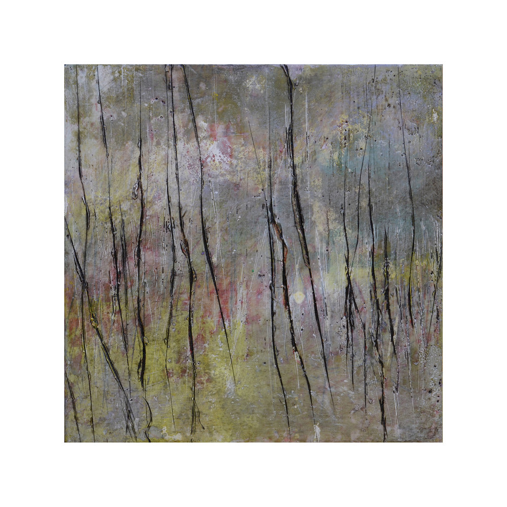 Thicket 4   12 x 12  Encaustic on Panel