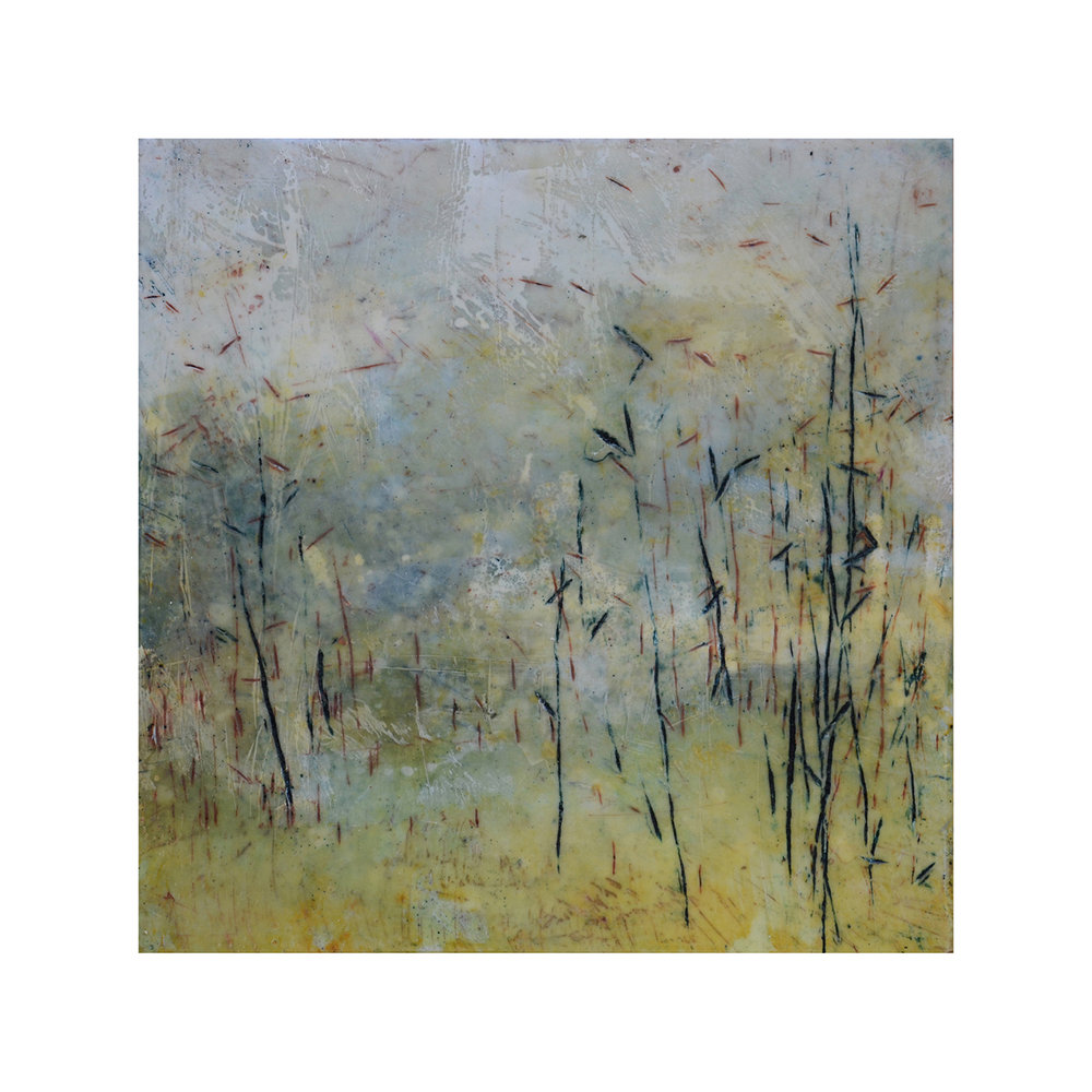 Thicket Edge   12 x 12  Encaustic on Panel