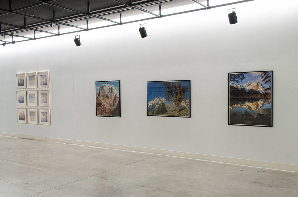 Still eat eggs (Installation view)