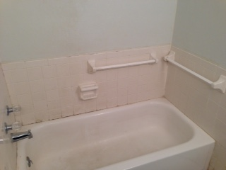 Before: Guest/Main Bathroom