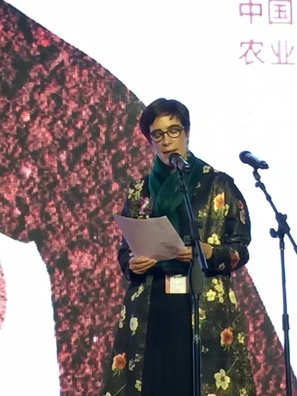 Curatorial Address, Henan Museum, photo credit: Guangzhen Zhou.