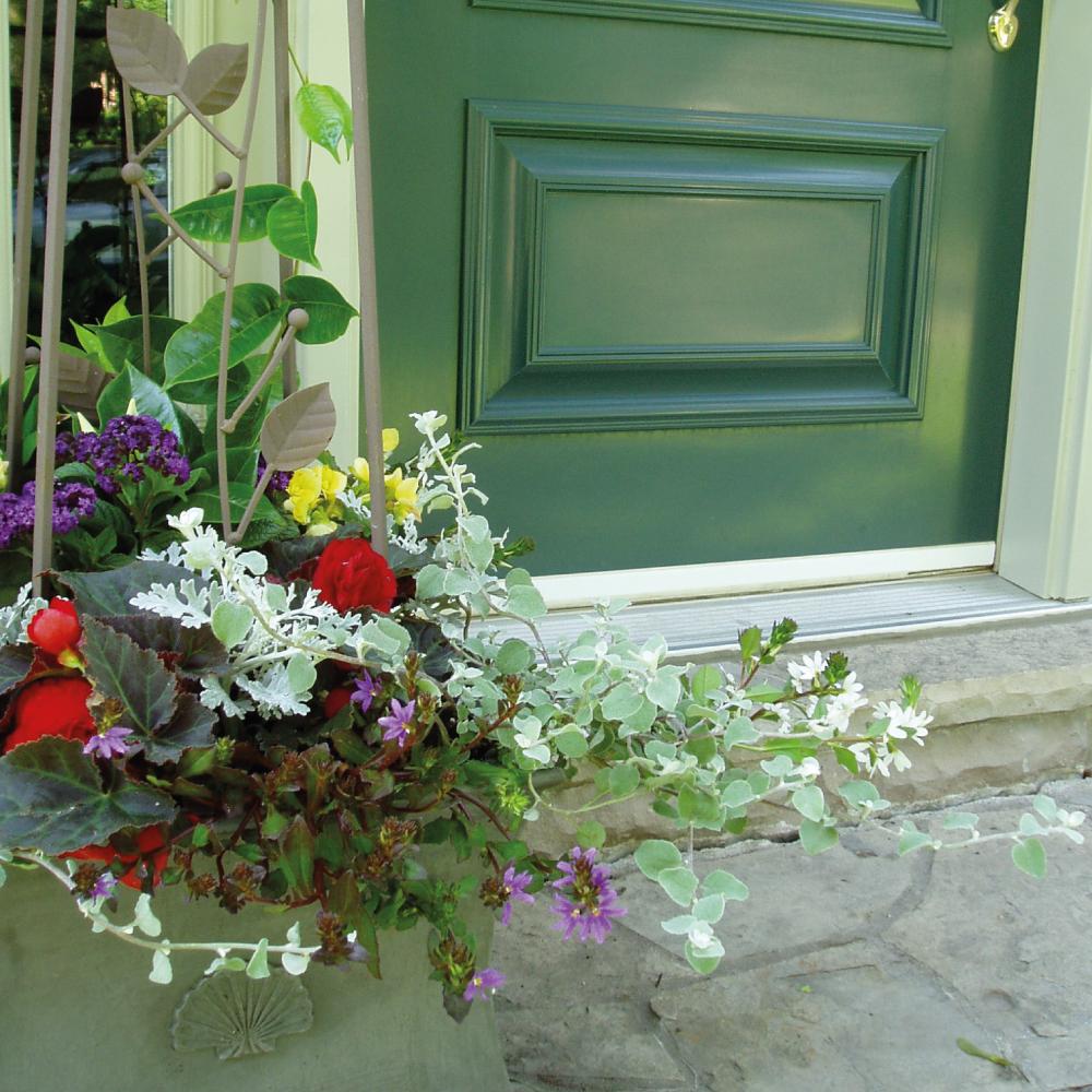 Summer-planters-1.jpg