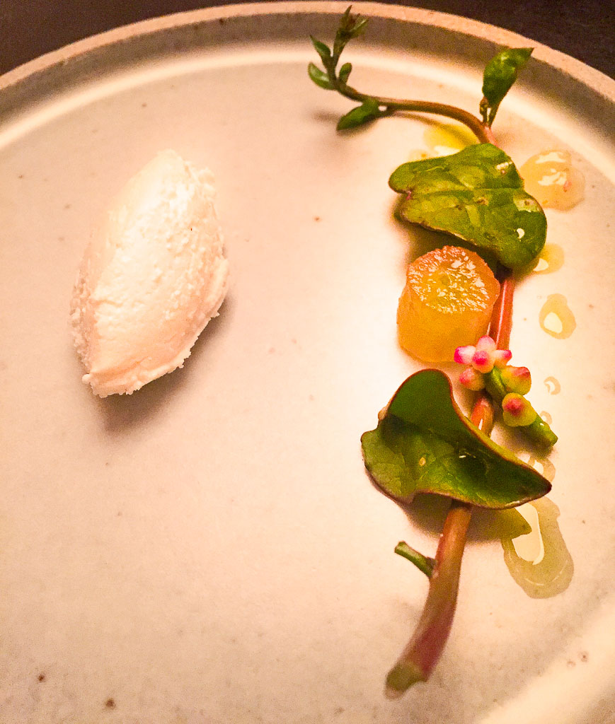 8th Course: Goat's Cheese + Grape Plant Cutting, 9/10
