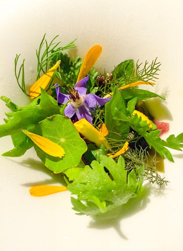 10th Course: Seaweed + Garden Herbs, 8/10