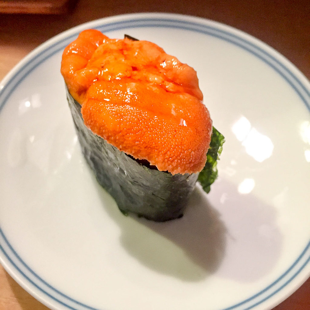 Course 5: Sea Urchin, 8/10