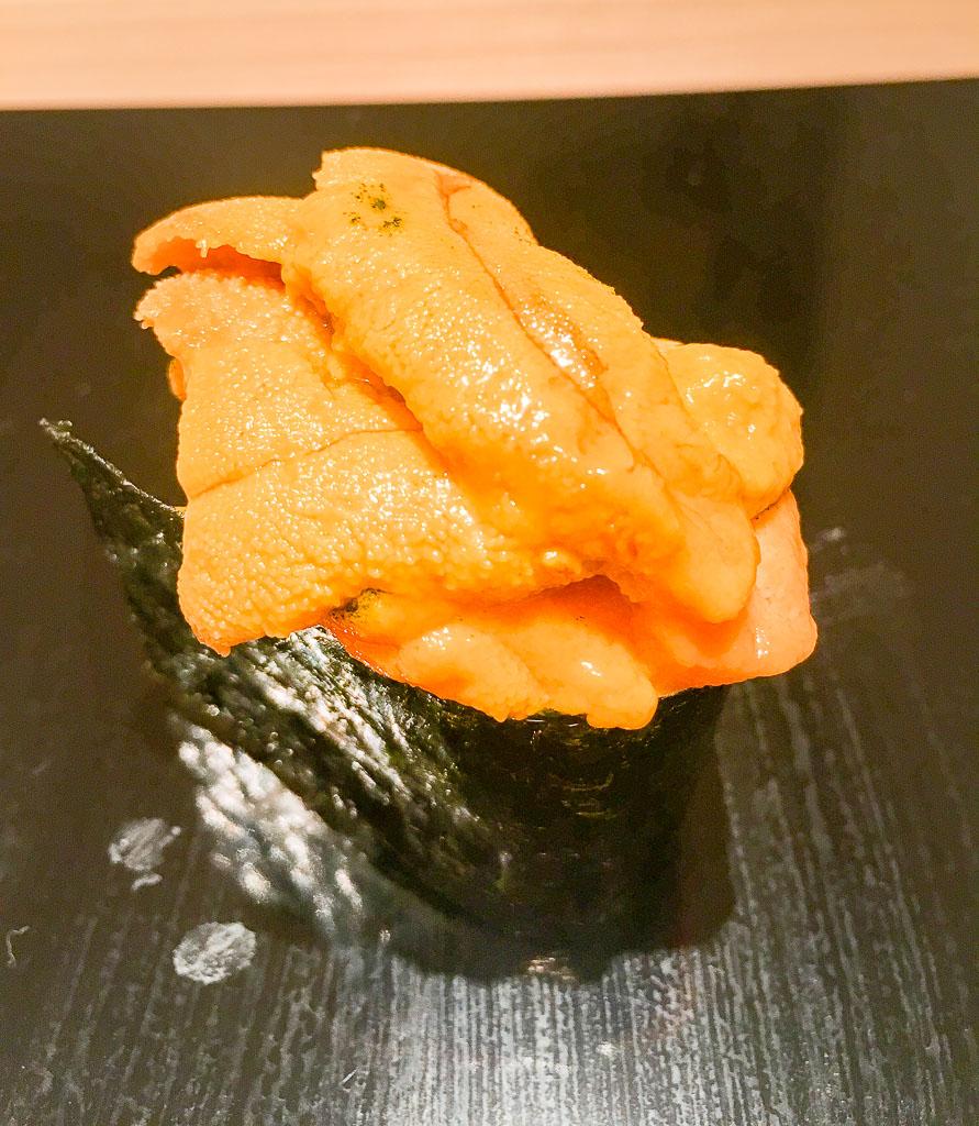 Course 15- Sea Urchin, 9/10