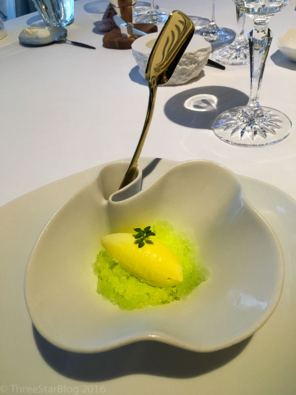 Palate Cleanser: Thyme Flower Granita, 8/10