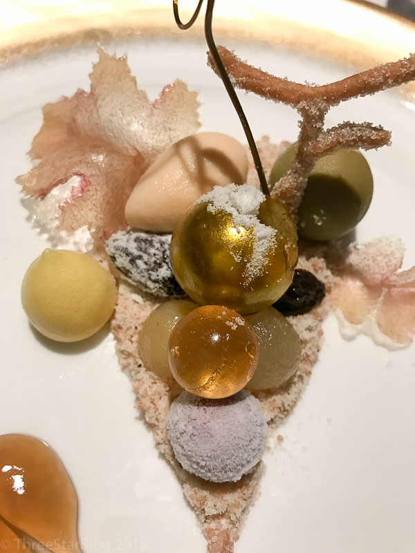 "Course 12: ""Botrytis Cinerea,"" 8/10"