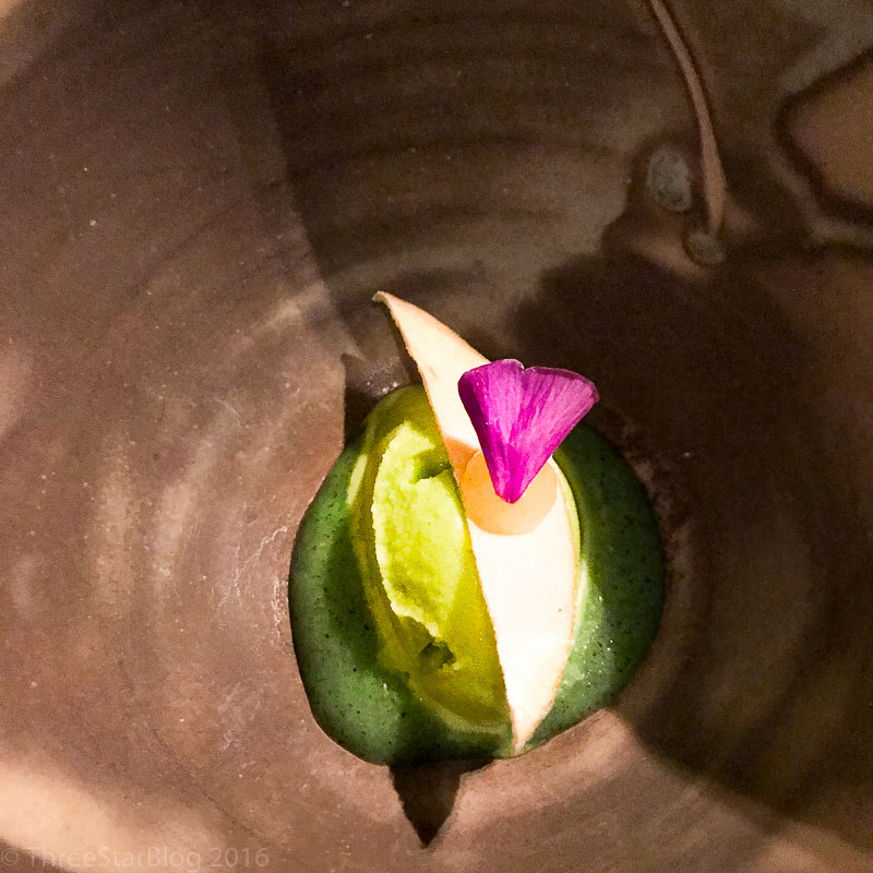 Course 10: Sorbet of Sorrel + Apple, 7/10