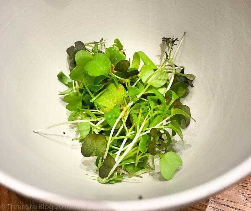 Salad A L'Instant