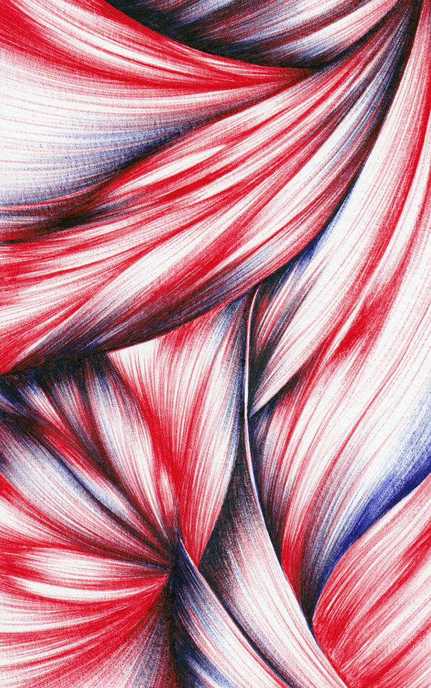 A detail section of my still untitled ballpoint pen drawing.