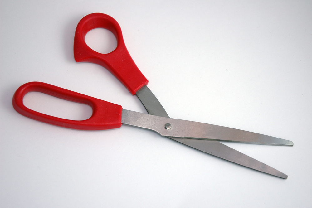 scissorsDSC_1438.jpg