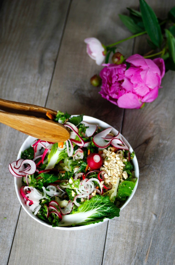 Beautiful Springy Radish Salad with Lime Dressing for springtime.