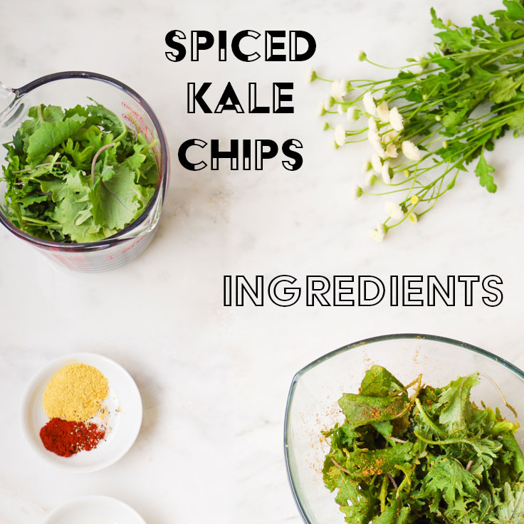kale-chip-ingredients.jpg