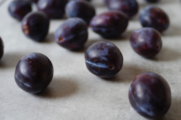 Italian prune plums are so delicious.