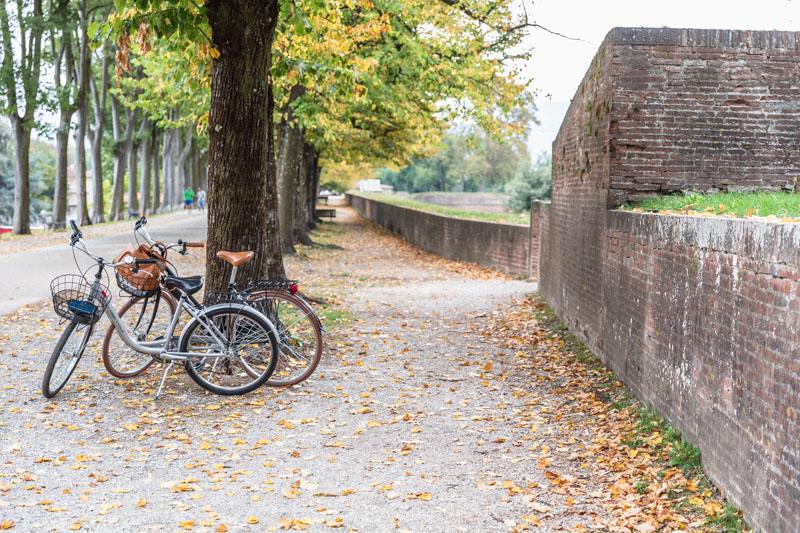 Biking on the Lucca Ramparts. Photo by Kari | Beautiful Ingredient.