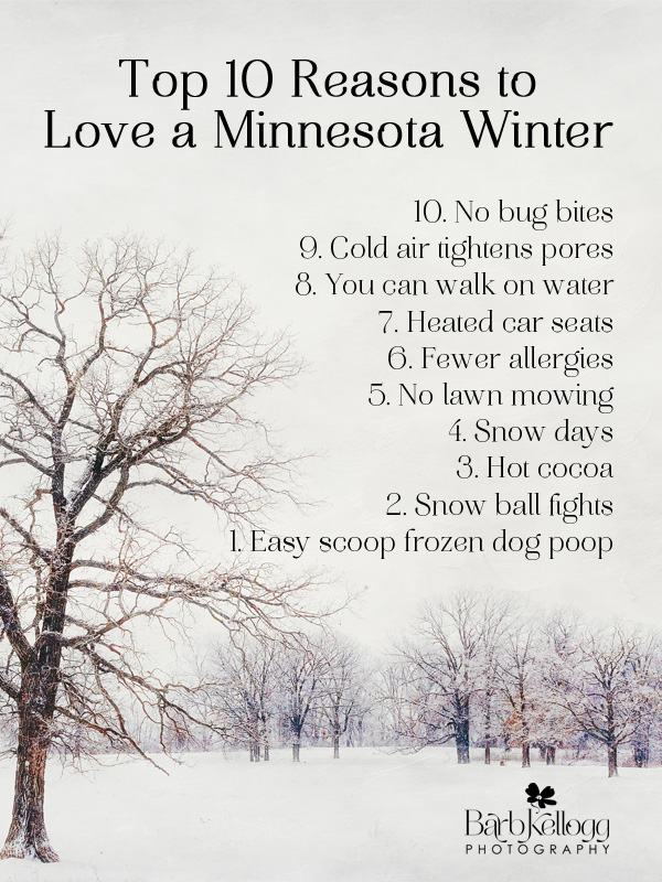 winter photo with reasons to love a minnesota winter