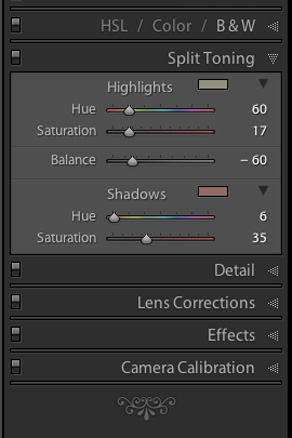 screen shot of Lightroom Split Toning