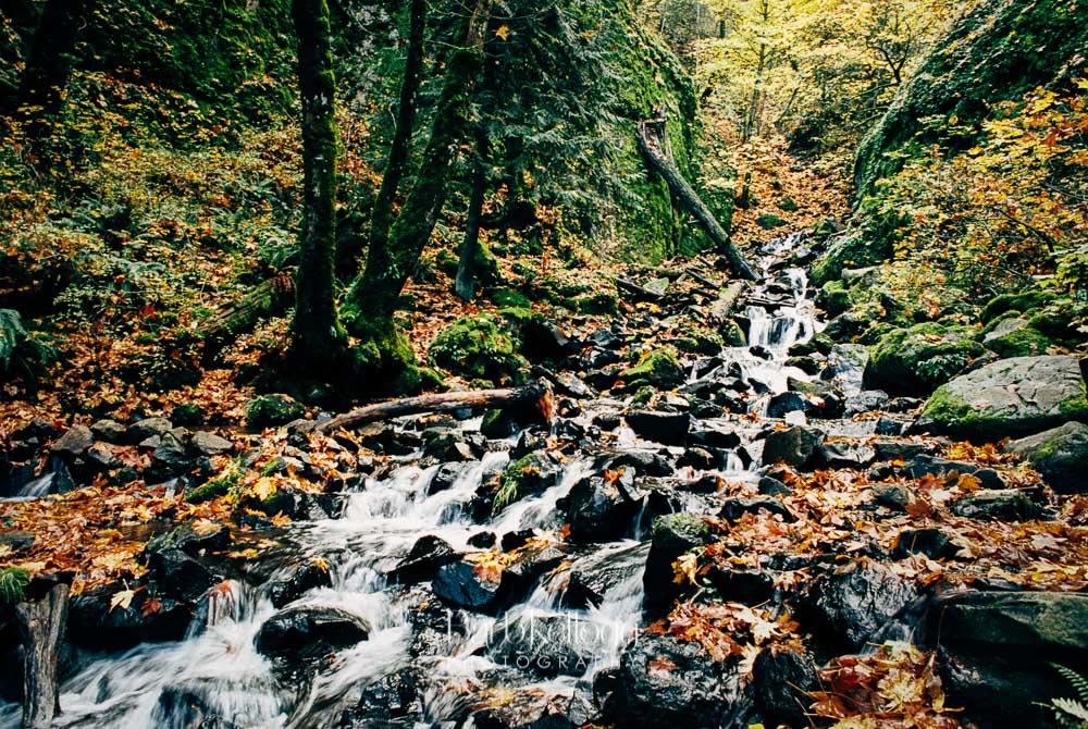Starvation Creek - Oregon