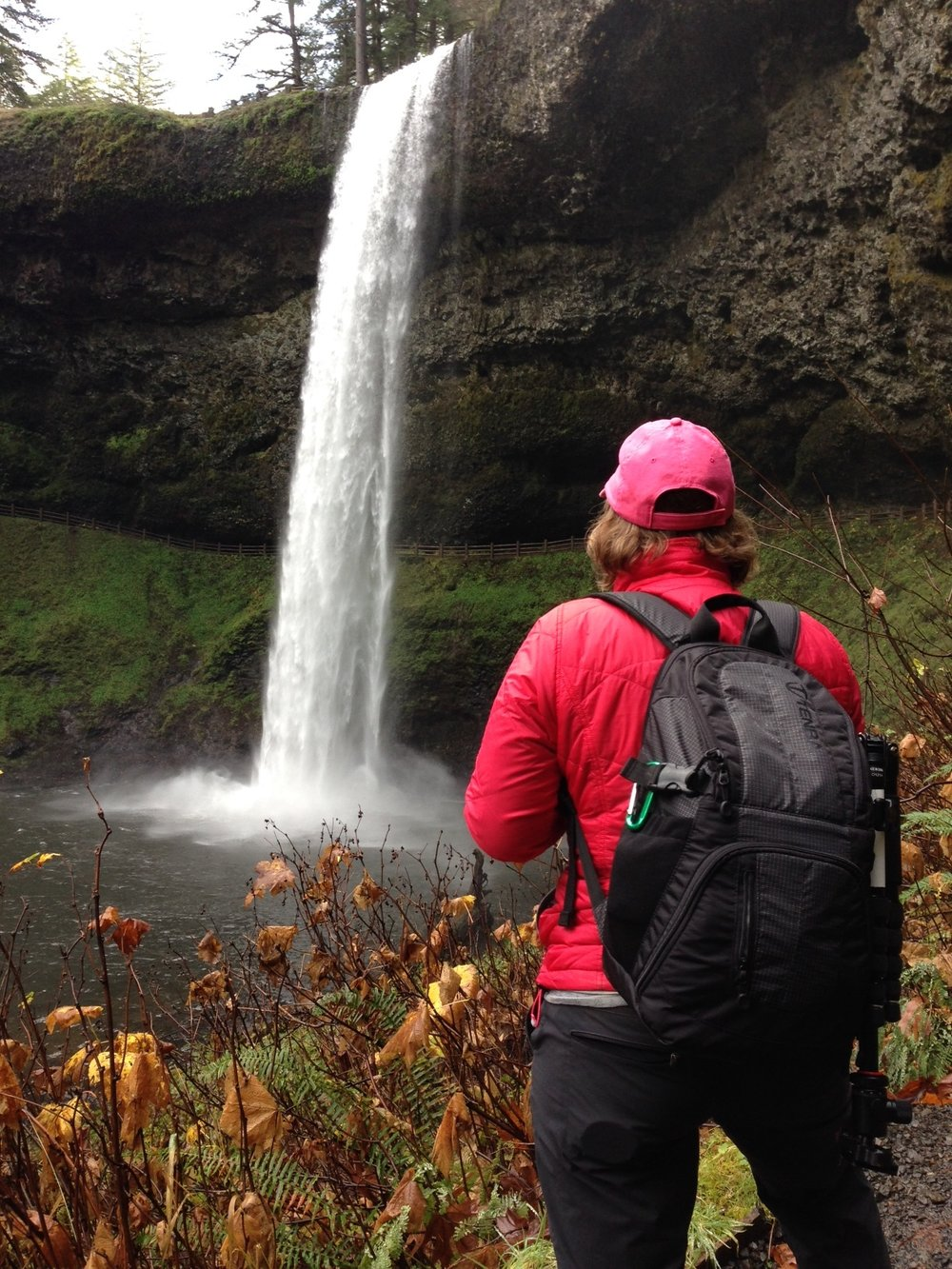 Looking at the South Falls, Silver Falls State Park