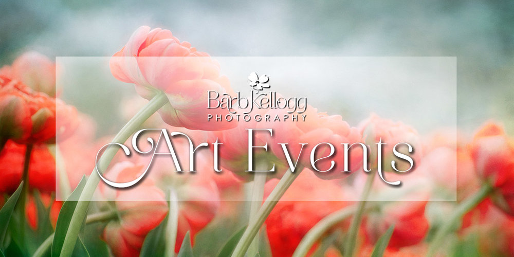 Art Fairs and Exhibits for Barb Kellogg