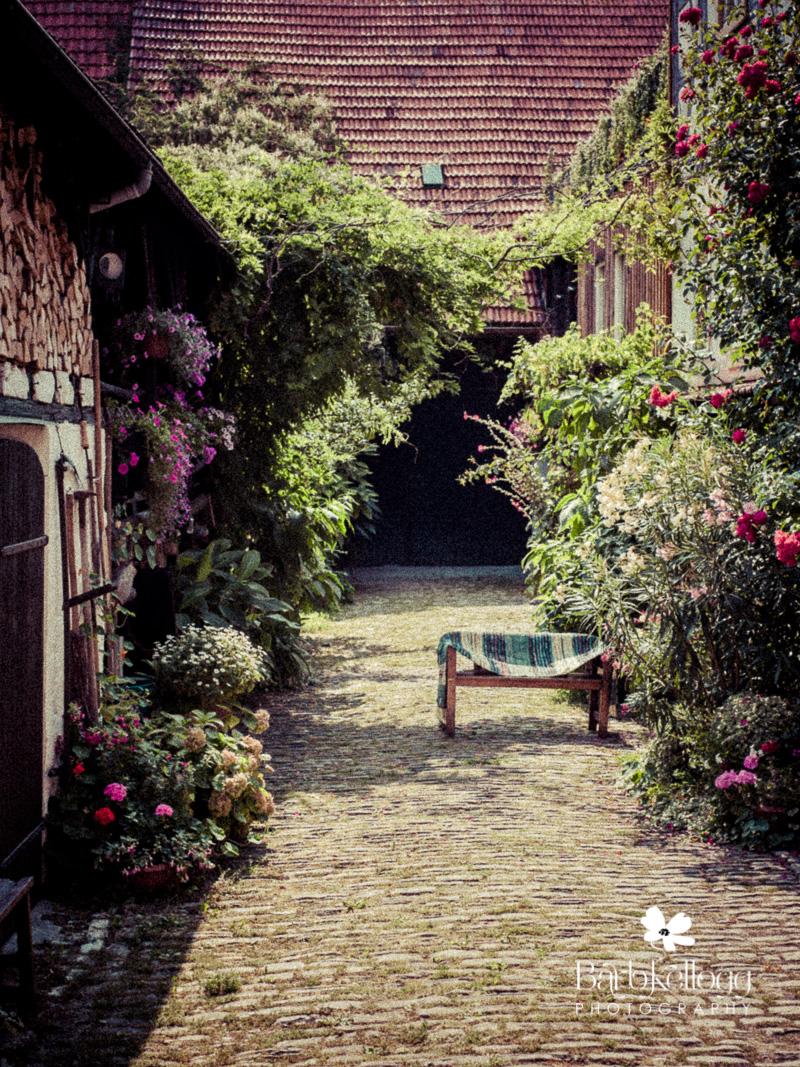 Garden area of woman's home