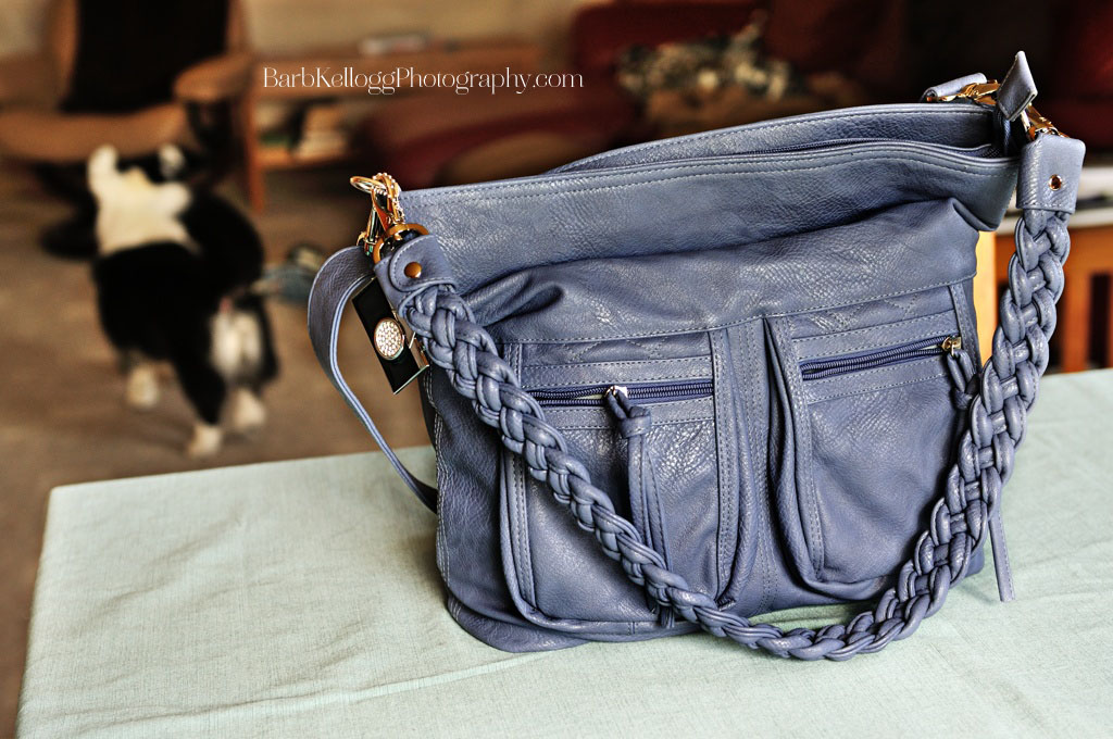 Epiphanie Lyric camera bag