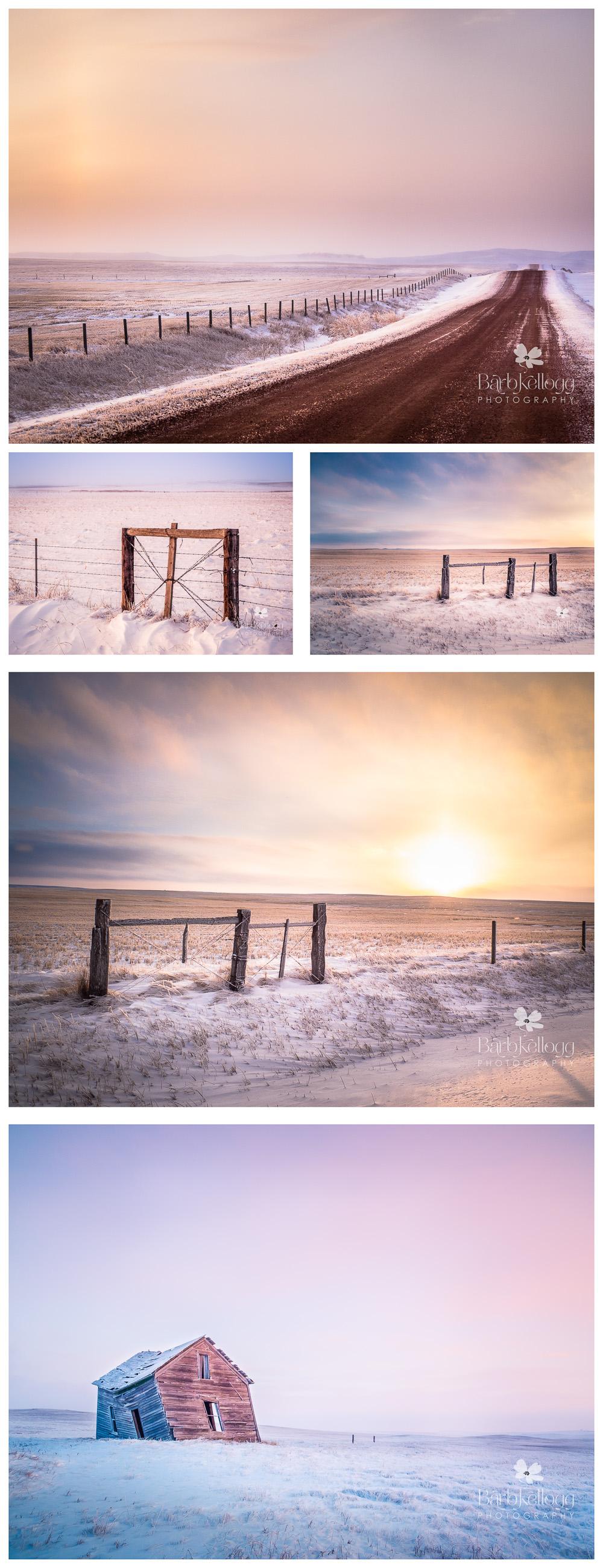 montana_winter_blog_collage1.jpg