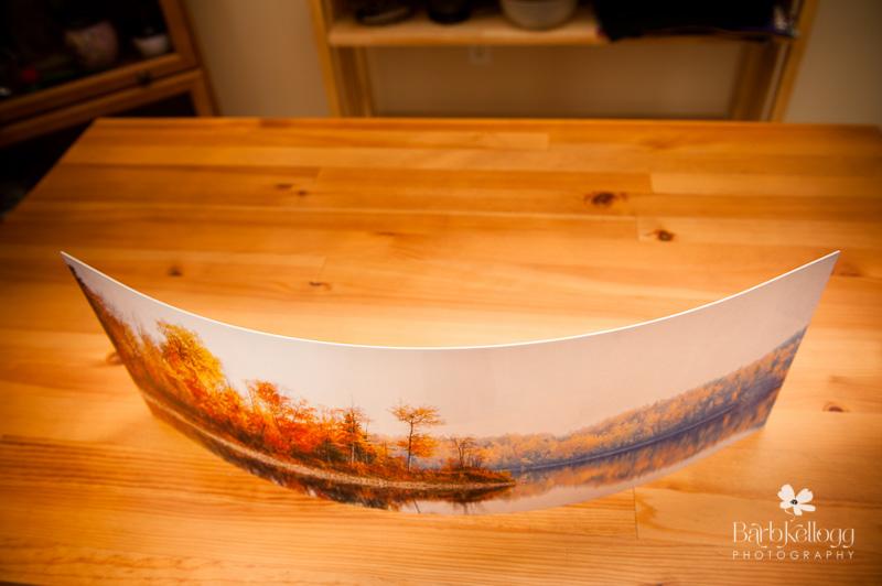 Top View of Curved Metal Print